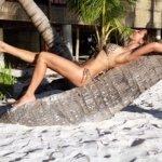 wildlife-leopard-bikini-coconut