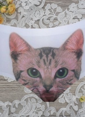 White-Thin-Seamless-Kitty-Cat-Briefs-DISPLAY-global-worldwide-APP